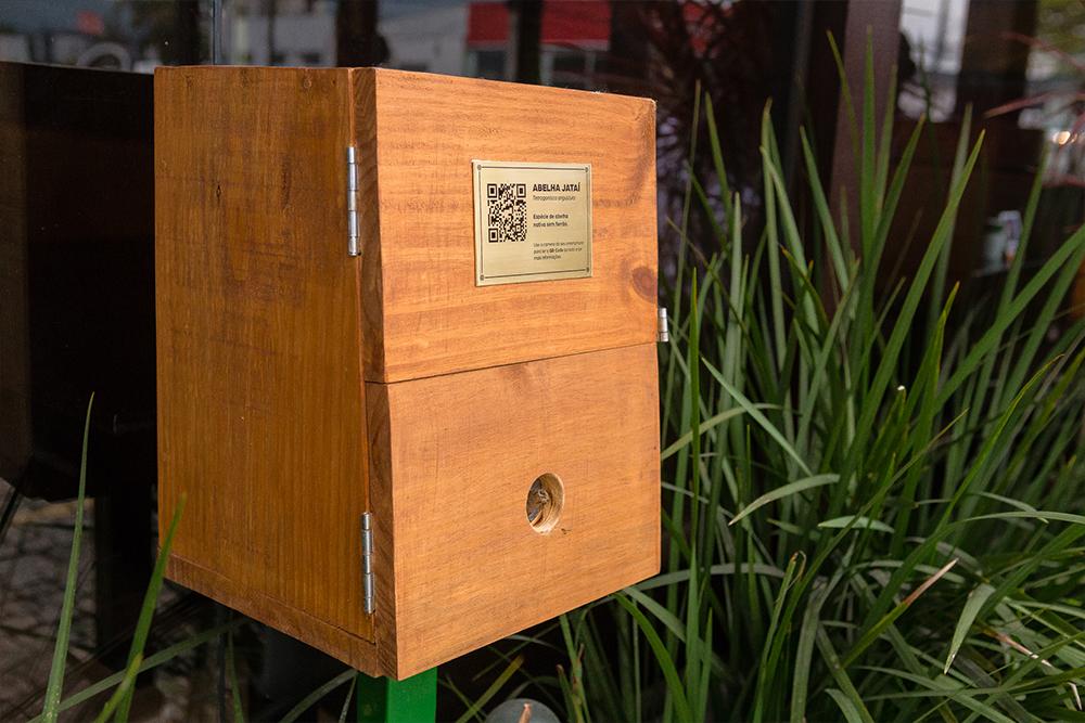 Abelhas sem ferrão: o seu mundo dentro de uma caixa
